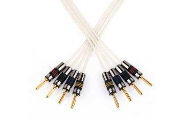 QES Original Bi-Wire Speaker Cable